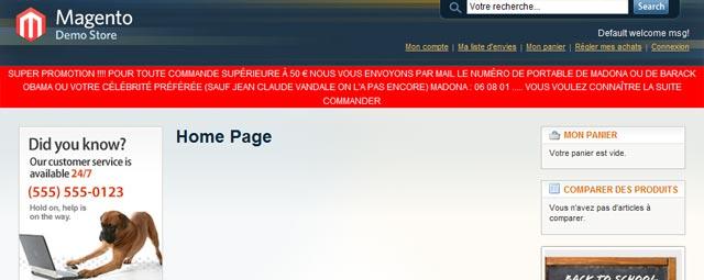 Ajout de code CSS spécifique à la homepage